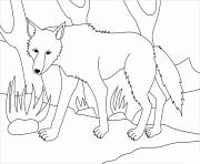 loup dans la foret par Olga Gaidoush dessin à colorier