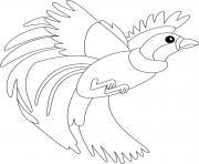 oiseau du paradis dessin à colorier