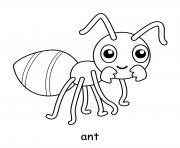 fourmis dessin à colorier