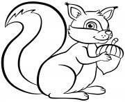 ecureuil squirrel chipmunk dessin à colorier