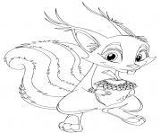 ecureuil squirrel dessin à colorier