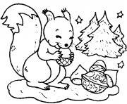 ecureuil hiver noix sapin dessin à colorier