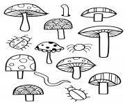 champignons coccinelle araignee dessin à colorier