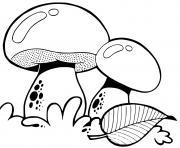 champignon amanite bolet satan dessin à colorier