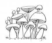 champignons de la foret dessin à colorier
