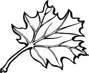 feuille erable automne canada dessin à colorier