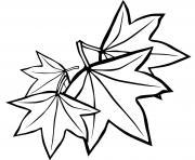 la saison de croissance feuilles erables dessin à colorier