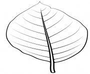 feuille de concombre dessin à colorier
