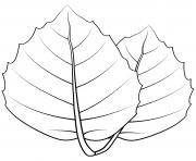feuille de chene doree dessin à colorier