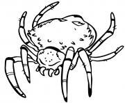 scary araignee realistic dessin à colorier