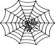 Simple araignee dessin à colorier