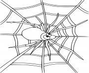 Cartoon araignee dessin à colorier