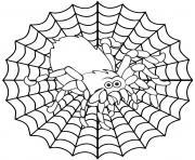 toile araignee dessin à colorier