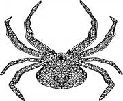 mandala halloween spider araignee dessin à colorier